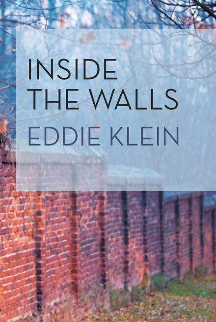 Book Cover of Inside the Walls